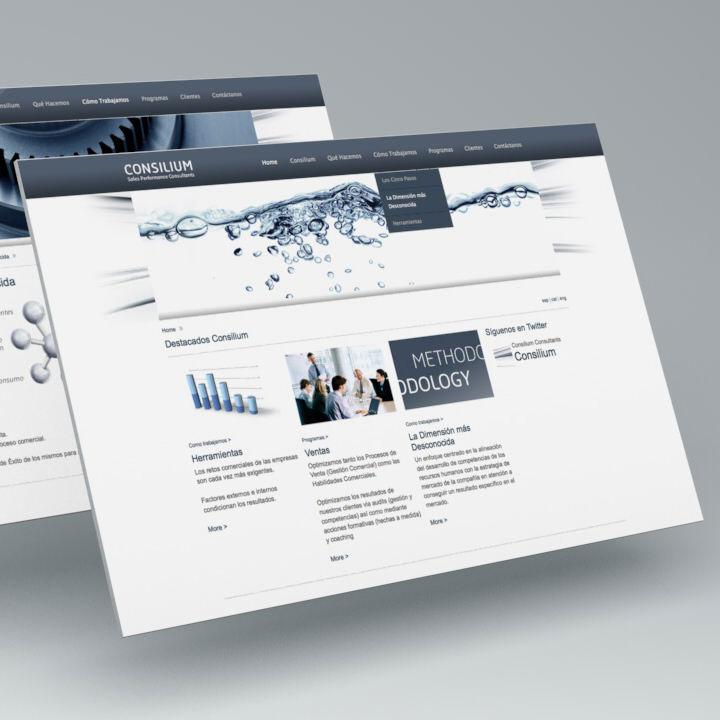 Pantallas. Diseño web Consilium