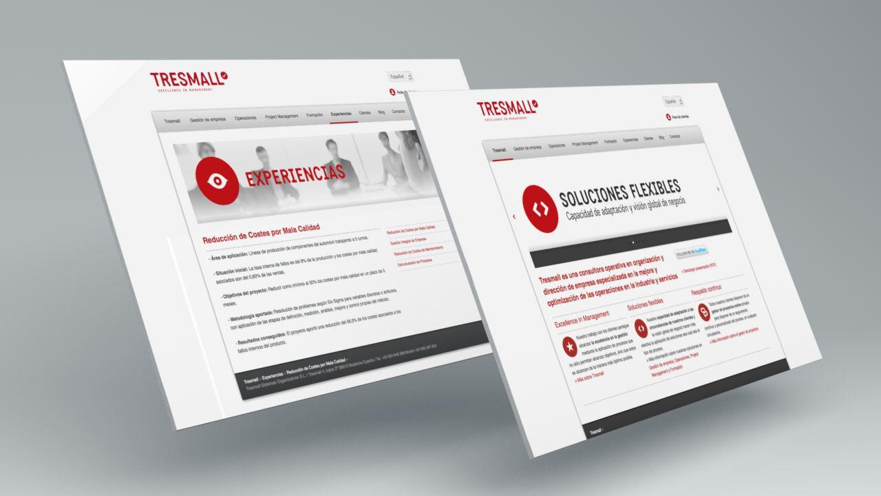 consultoria página web. Diseño web. Tresmall