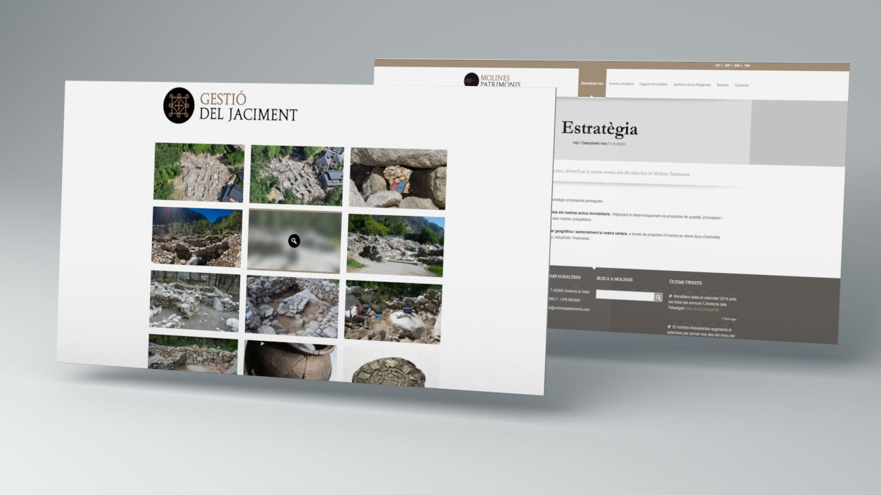 responisve website. diseño web. molines patrimonis