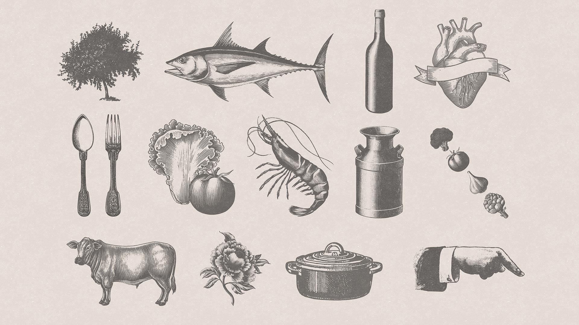Diseño de marca y motion graphics El Moli Ilustraciones